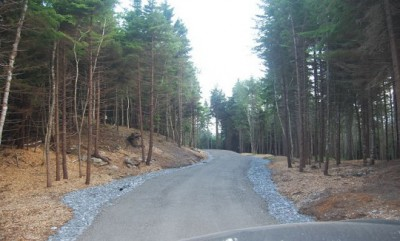 This driveway winds through Maine's rugged rocky soils respecting the lay of the land